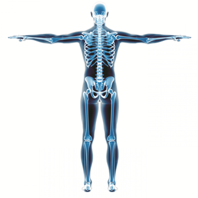 Event for GPs: Exercise & Musculoskeletal Medicine – The Way Forward